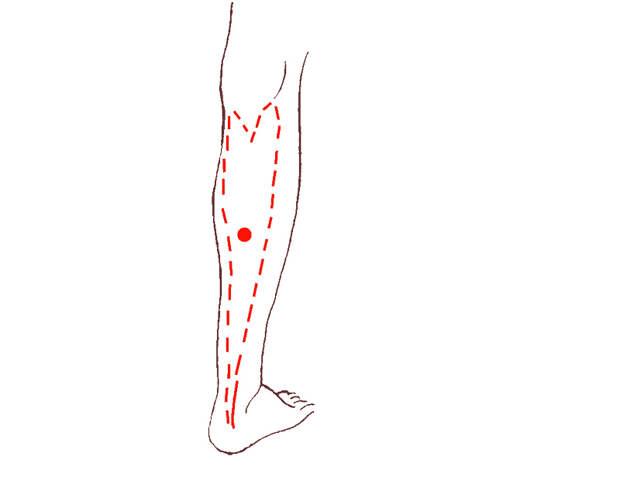 Упражнения для женщин, омолаживающие организм