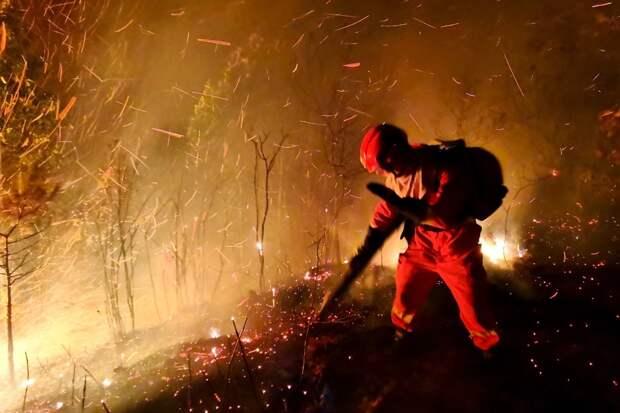 Амурские пожарные потушили семь палов за сутки