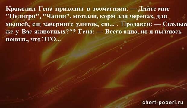 Самые смешные анекдоты ежедневная подборка chert-poberi-anekdoty-chert-poberi-anekdoty-59540603092020-10 картинка chert-poberi-anekdoty-59540603092020-10