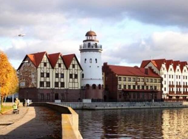 А могли бы пить баварское… В Калининграде началась «зачистка» немецких НКО