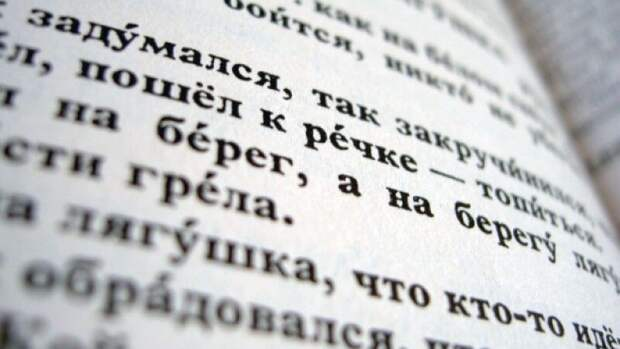 Марокканец рассказал о сложностях в изучении русского языка
