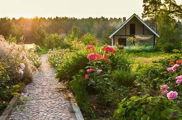 Как арендовать земельный участок с правом выкупа?