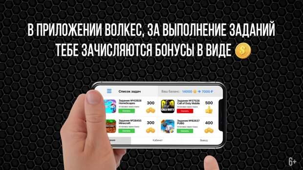 Волкес - популярная программа для заработка денег в интернете!