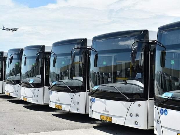 Для Сочи закупят 50 новых автобусов