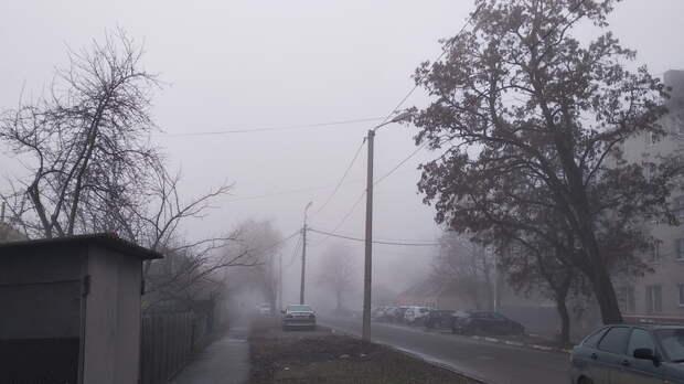 Предупреждение объявлено вРостове из-за тумана