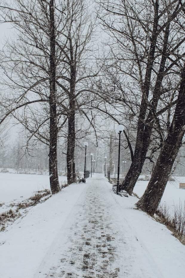 Фотоподборка: Зима чудес