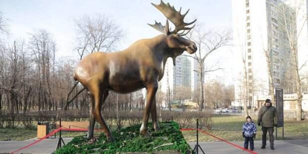 Уникальные арт-объекты установлены во многих районах столицы