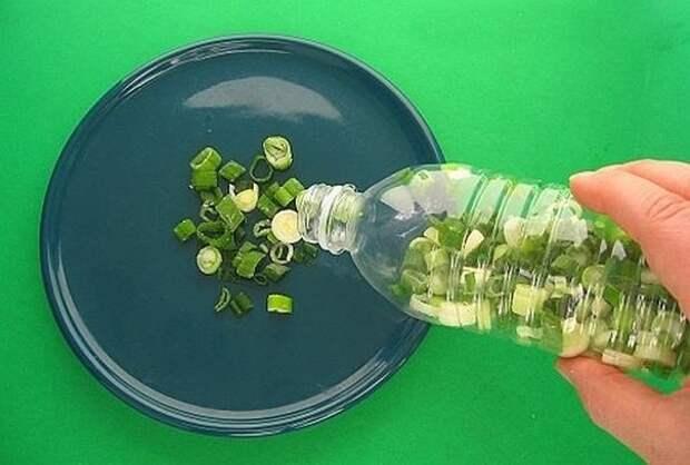 Этот способ длительного хранения зеленого лука в холодильнике уникален