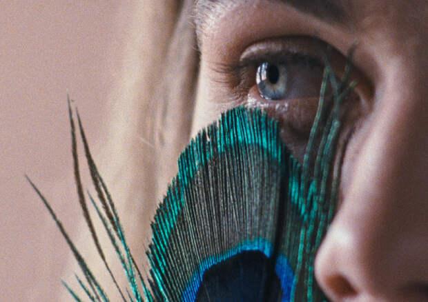 «Дух огня»-2020: Память и предубеждение