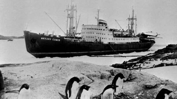 Япония выдвинула территориальные претензии на Западную Антарктиду