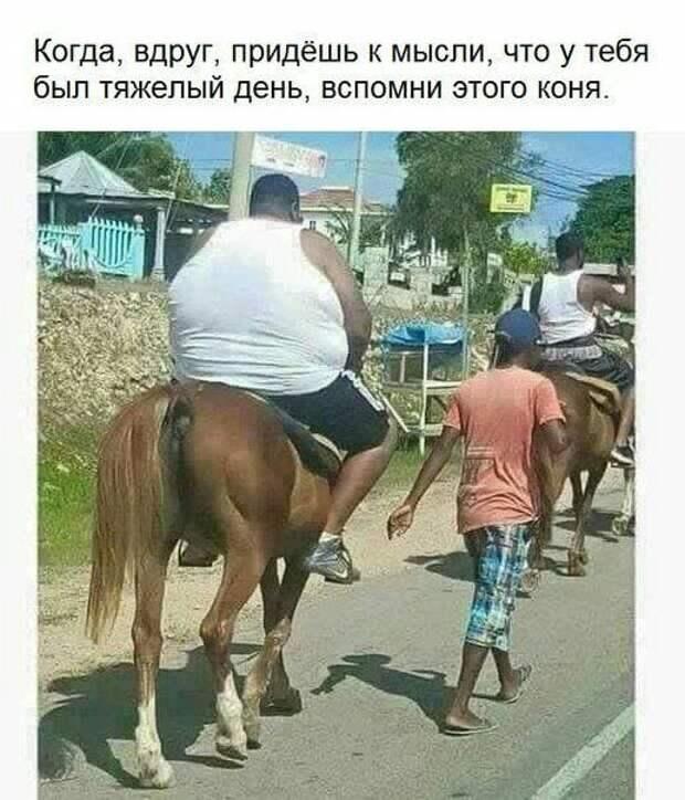 У дураков две беды: дороги и Россия