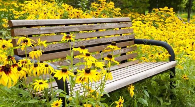 Скамейки в саду: коллекция лучших идей