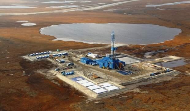 Уже вэту пятилетку «Газпром» может начать осваивать Тамбей— источник