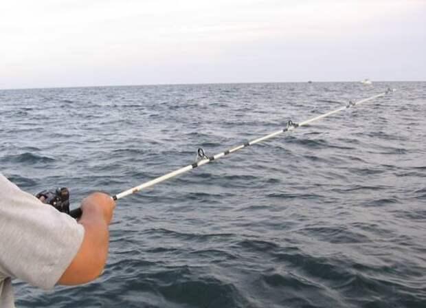 В России существенно изменились правила рыбалки