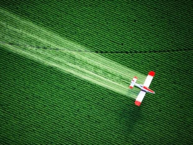 Эти сельскохозяйственные самолёты используются для распыления пестицидов и удобрений на сельскохозяйственных полях.