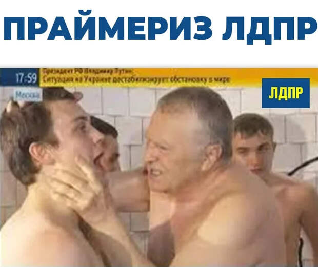 Праймериз ЛДПР