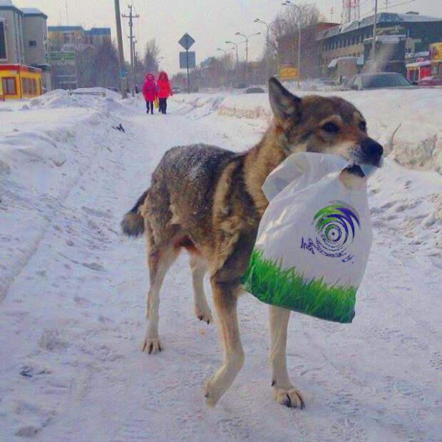 Источник фото: ok.ru