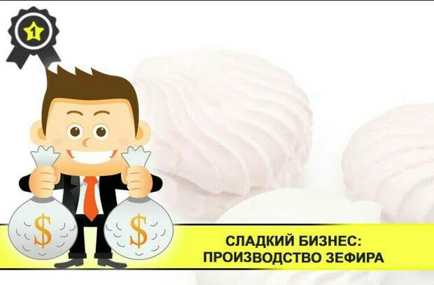 Сладкий бизнес: производство зефира