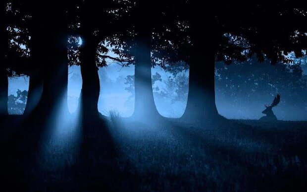 Почему свет Луны не должен падать на спящего человека?
