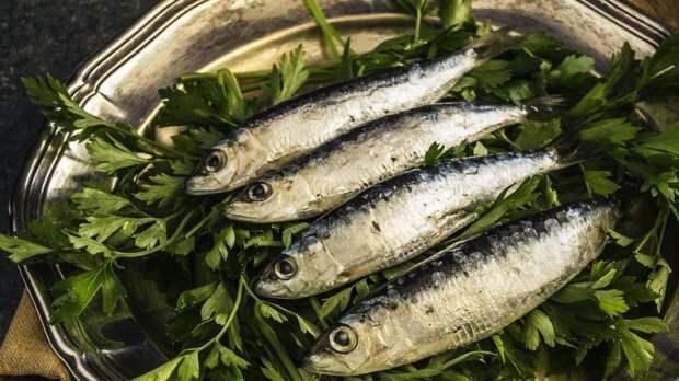 Диетолог назвал самую полезную и дешевую рыбу