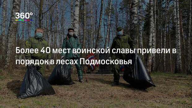 Более 40 мест воинской славы привели в порядок в лесах Подмосковья