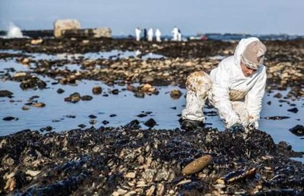 Кабмин подготовит закон об ответственности владельцев предприятий за вред экологии