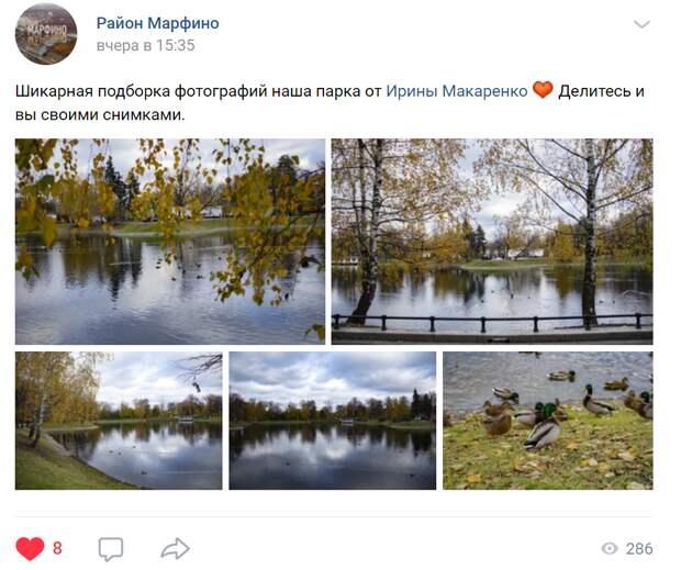 Осенние виды Останкинского парка впечатлили жительницу Марфина