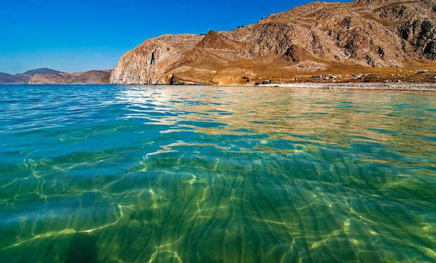Загадки Байкала: Обитают ли в озере Байкал неопознанные животные?
