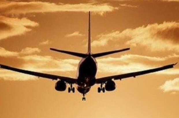 Два человека стали жертвами падения легкомоторного самолёта под Иркутском