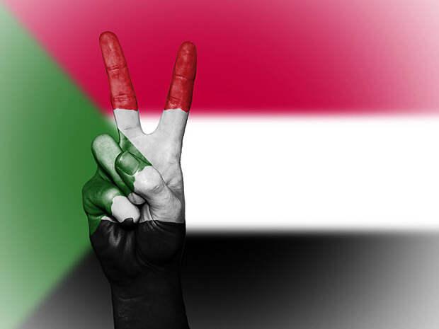 Посольство России в Судане опровергло «утверждения от лукавого» о приостановке соглашения о базе ВМФ