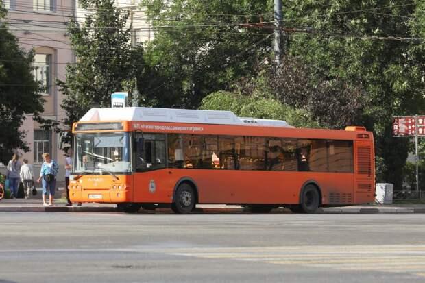Три новые полосы для общественного транспорта появятся в Нижнем Новгороде