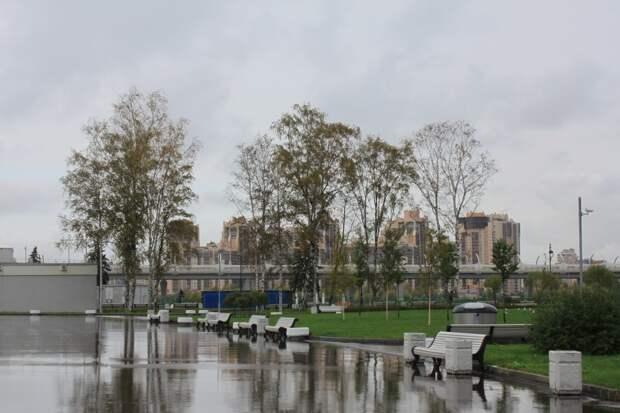 Осень на Крестовском острове