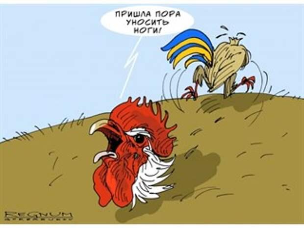 «Просто сотрясание воздуха» — Украина «передумала» наступать на Донбасс