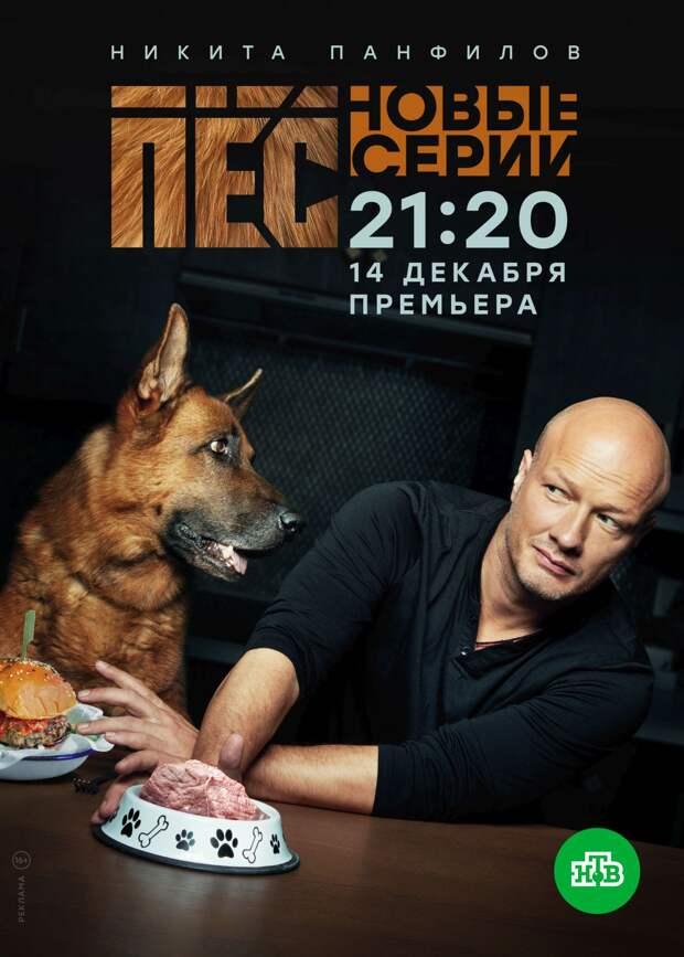 Пятый сезон «Пса» начнётся в середине декабря