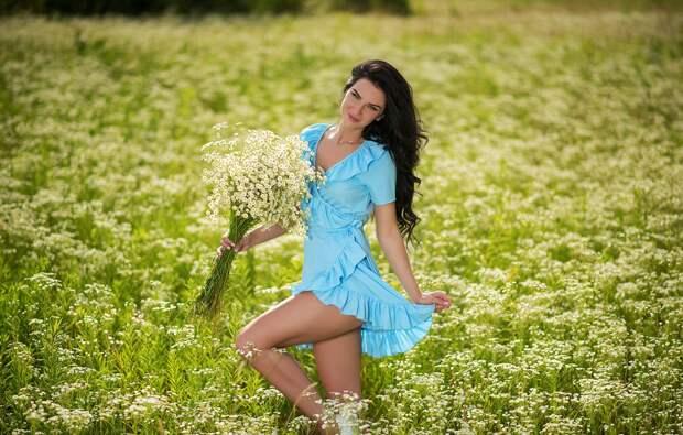 Обои зелень, поле, солнце, цветы, секси, модель, портрет, ромашки ...
