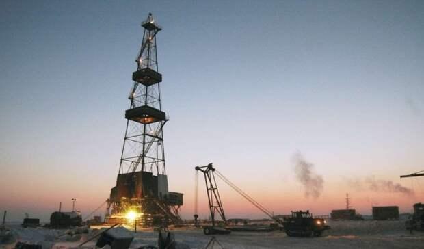 «Роснефть» планирует купить Пайяхское месторождение— СМИ
