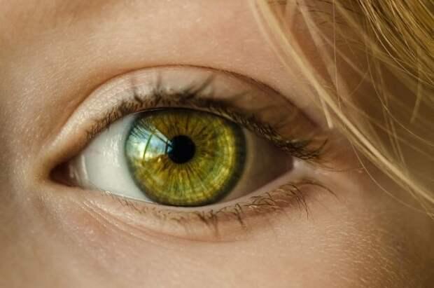 Нотариусы смогут устанавливать личность клиентов по голосу и глазам