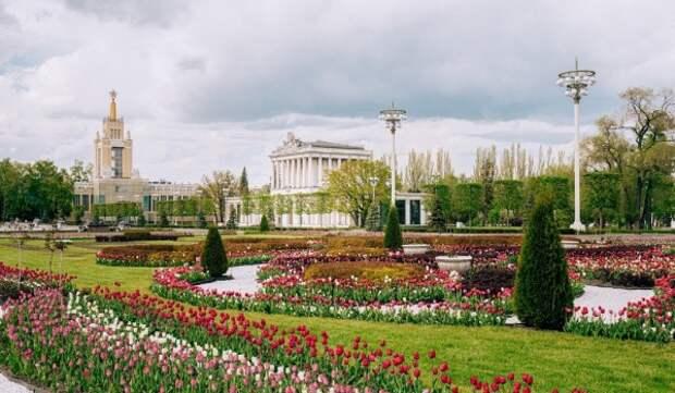 Наталья Сергунина рассказала о скором открытии экскурсионного сезона на ВДНХ