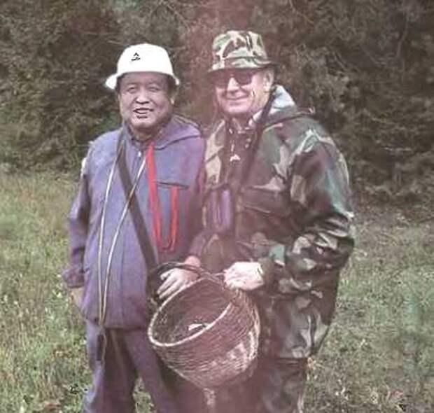 Лечебные свойства китайских грибов