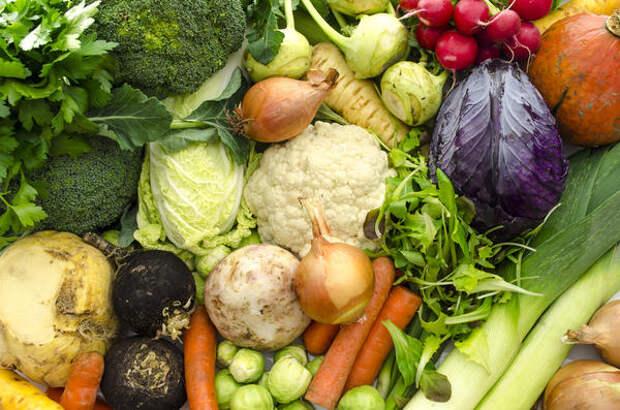 Лучше всего последовательно записывать все овощные культуры, которые выращиваем на даче или хотели бы выращивать