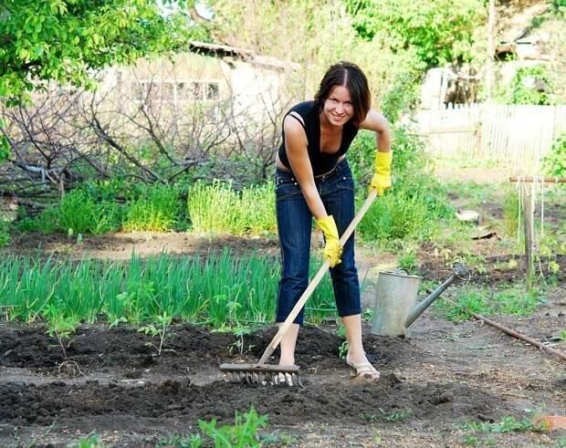Календарь садово-огородных работ. МАРТ - МАЙ МАРТ