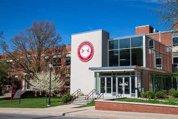В американском университете слова «первокурсник» и «старшекурсник» сочли сексистскими