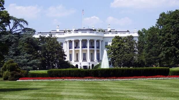 Экс-советница президента США Масси желает стать гражданкой РФ