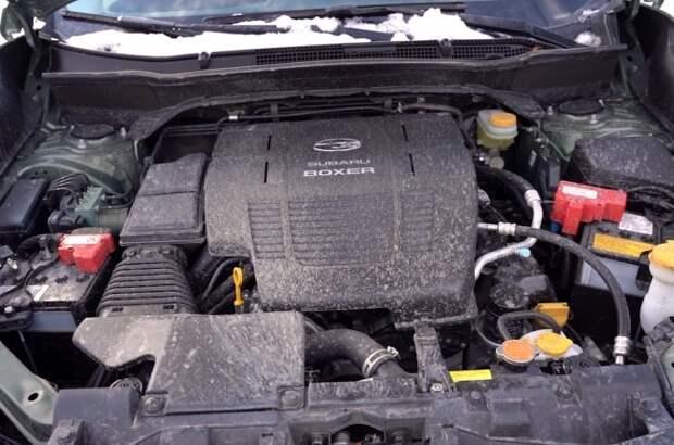 Subaru Forester e-Boxer: вперед в прошлое. Subaru Forester