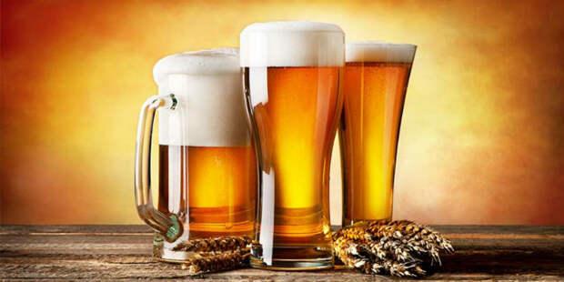 Почему мы хотим красное, а пьем белое? Иллюстратор раскрыл секрет выбора алкогольных напитков