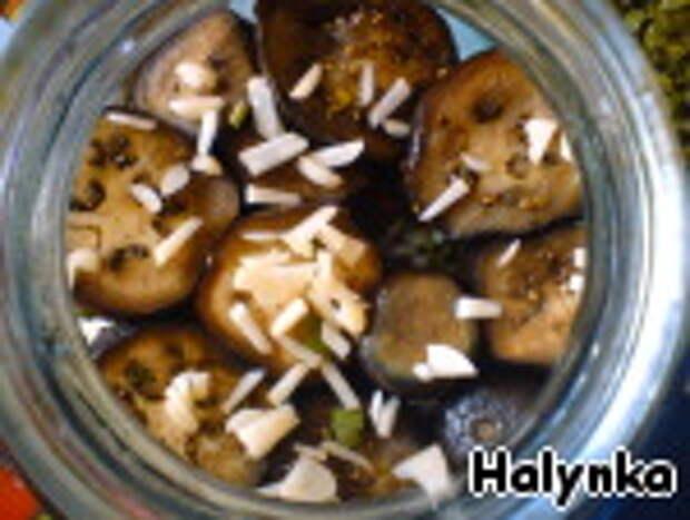 Баклажаны квашеные ингредиенты