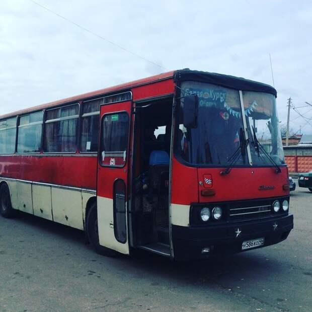 А такие Икарусы ходили в пригород и по междугородним направлениям автобусы, воспоминания, детство, ностальгия