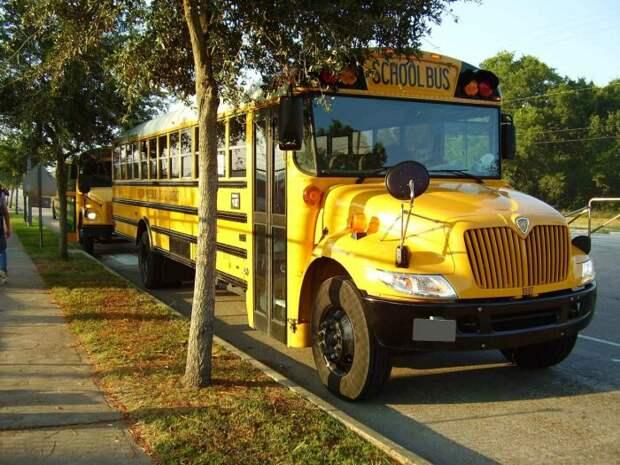 Желтые автобусы - мировая практика.  Фото: politeka.net.