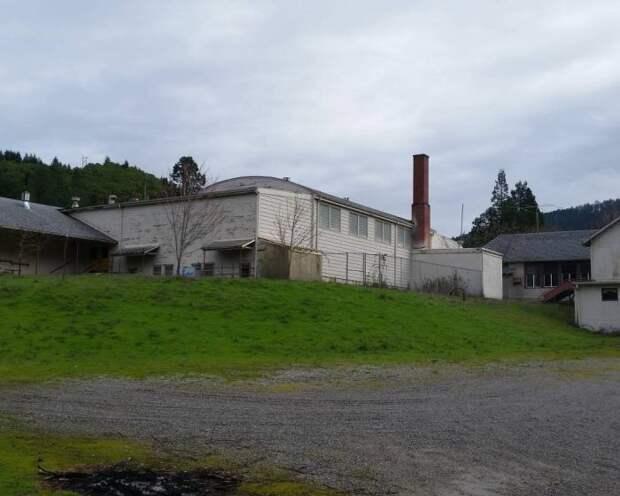 На аукционе продается городок Тиллер в штате Орегон (11 фото)