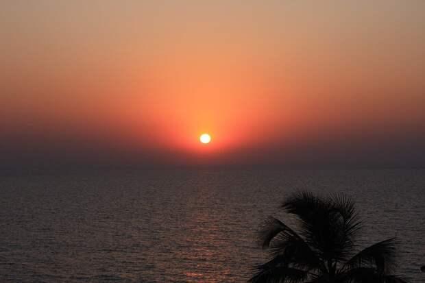 Пляжи Гоа залило мазутом